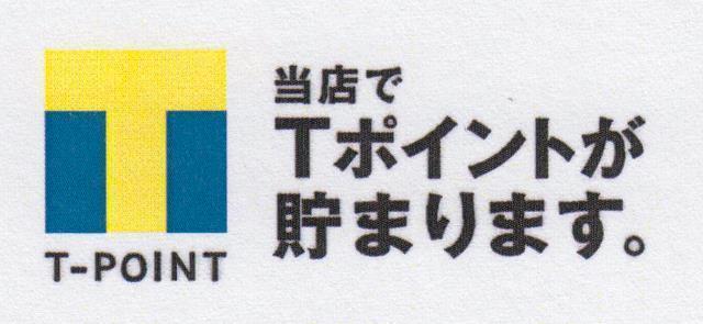 tpoint3.jpg